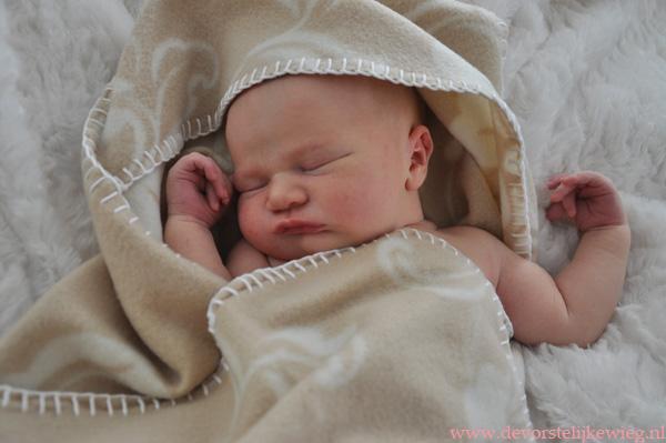 baby-vorstelijkewieg2